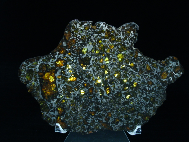 Admire Pallasite Meteorites For Sale!