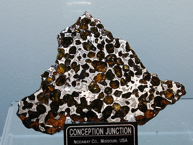 Conception Junction Pallasite Meteorite Slice - 62.9 grams