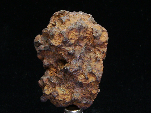 Springwater Pallasite Meteorite Individuals For Sale